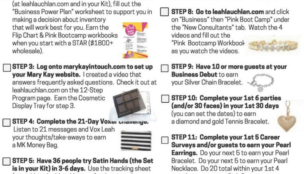 ll 12 step checklist 10418